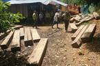 Bắt cựu giám đốc BQL rừng phòng hộ Sông Tranh