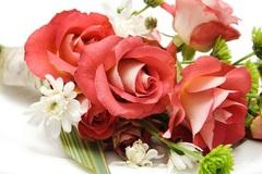 Những lời chúc ngày Phụ nữ Việt Nam 20/10 ý nghĩa nhất