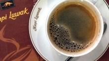 Sự thật rùng mình sau loại cà phê chồn ngon nhất thế giới