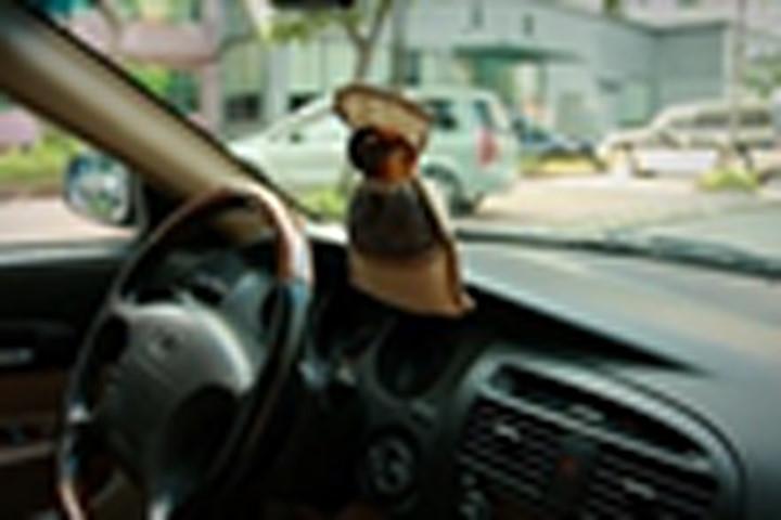 Để nước hoa trong ô tô, coi chừng cài bom nổ chậm