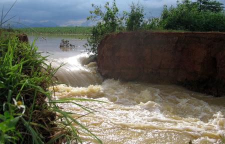 Thanh Hoa: Dike broken, 1,500 houses submerged