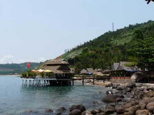 Bindweed menaces Son Tra nature reserves