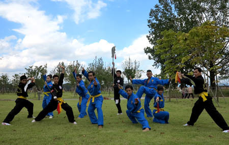 Vietnamese martial art may become intangible cultural heritage