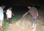 Hàng trăm người dân bức xúc vì bị đào trộm mộ trong đêm