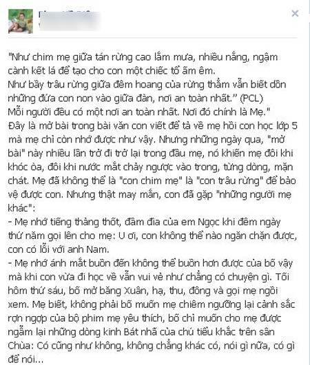 Thư tạ lỗi của mẹ Nhật Nam gửi con