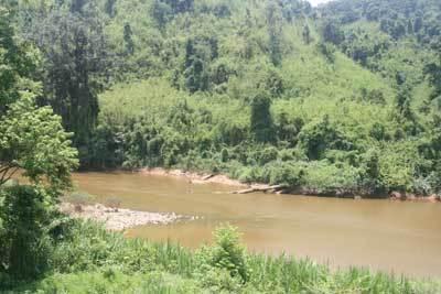 Thủy điện, Đồng Nai, Vườn Quốc gia Cát Tiên, rừng, quy hoạch