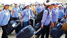 Nhiều người Việt ở Nhật bị kỳ thị vì ăn cắp vặt?