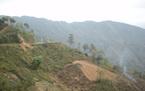 Lật xe du lịch tại Lào, hơn 20 người Việt bị thương