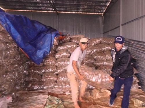 Khoai tây, Trung Quốc, Đà Lạt, chợ, Long Biên…