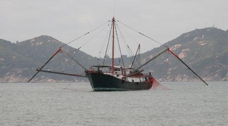 Trung Quốc, Biển Đông, tranh chấp, nguồn cá, dầu khí