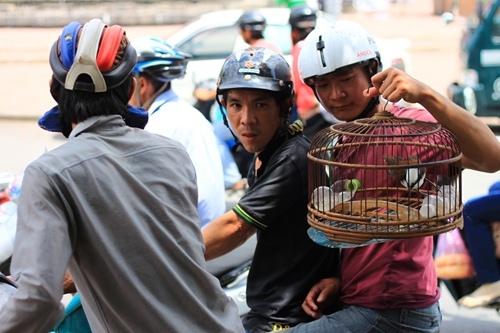 Chợ sâu bọ 'độc nhất' ở Sài Gòn