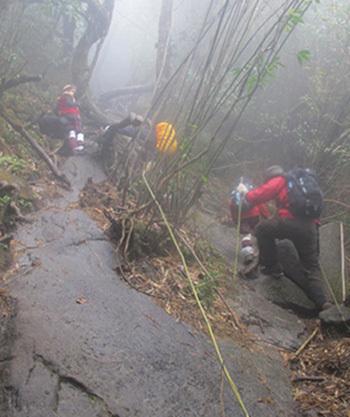 leo núi, mất tích, Phan Xi Păng, Fansipan, trưởng đoàn