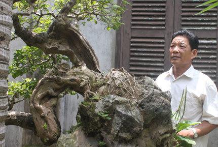 Phù Đổng, Gia Lâm , Nam Định , Thánh Gióng , Hà Nội , Pháp , Hà Phương , khiếp sợ , tỷ phú , Làm vườn