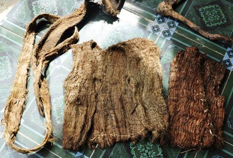 40 năm,  người rừng, Quảng Ngãi