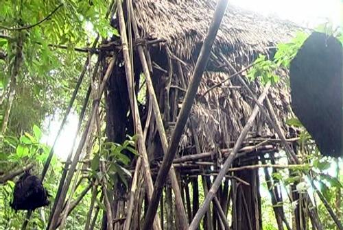 người rừng; Quảng Ngãi