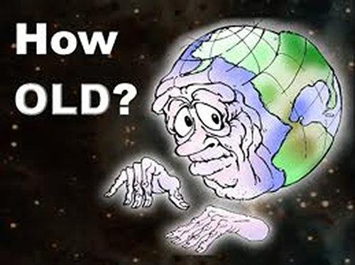 câu hỏi, khoa học, trả lời, mặt trời, chọn lọc tự nhiên
