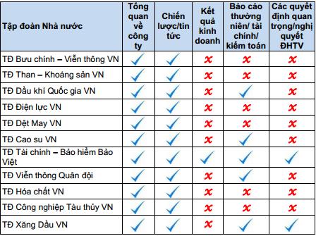 Website các DNNN Việt Nam chỉ để xem cho vui?