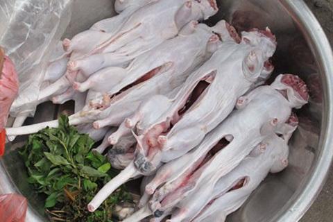 Chuột cống, bán thịt chuột, chuột, đặc sản chuột, ung thư, bệnh viện,
