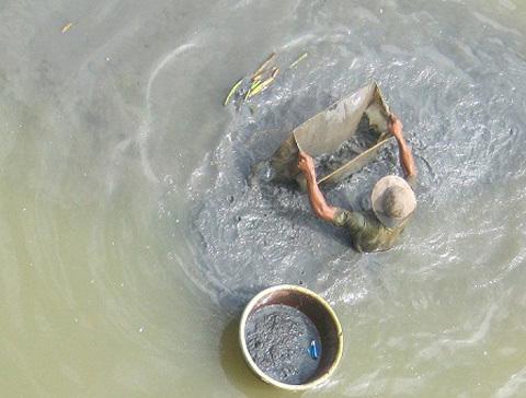 Đào đáy lênh 'săn' trùn giữa Sài Gòn
