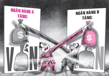 ngân hàng, sở hữu, tổ chức tín dụng, lãi suất, tranh chấp, tiền gửi