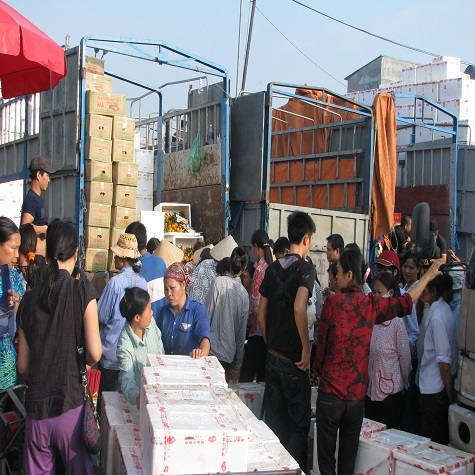 Quýt Trung Quốc rẻ như rau ở chợ Long Biên