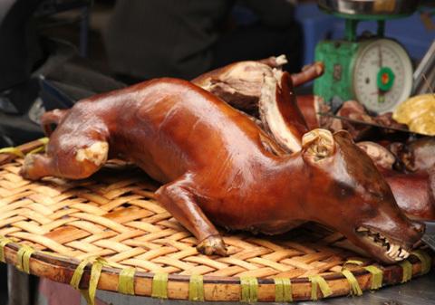 10 món ăn Việt khiến Tây thích và... ghê sợ!