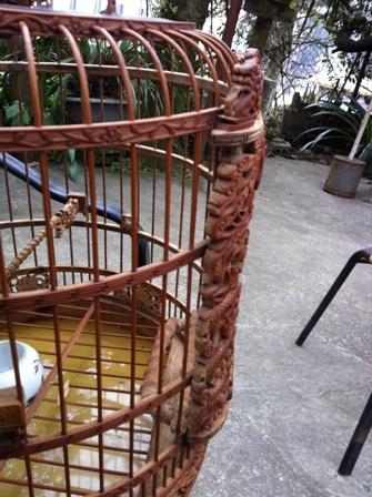 chơi chim, Quế Lâm, tiền tỷ, Sa Pa...