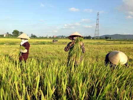 Quảng Ninh sắp 'cán đích' Xây dựng nông thôn mới