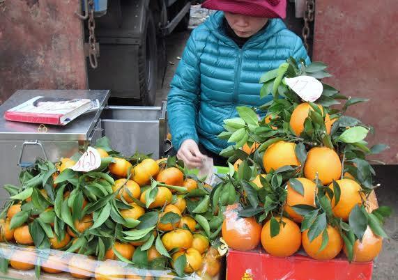 Vớ bở từ gánh hàng rong hoa quả Tàu