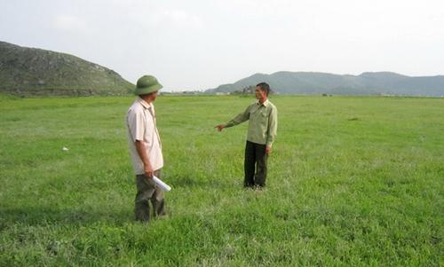 Phạm Chi Lan, kinh tế, Việt Nam, Đồng bằng sông Cửu Long