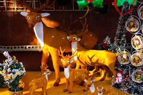 Ngắm phố Hàng Mã rực rỡ mùa Noel