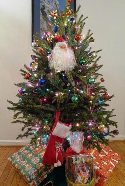 Noel, thông, GIáng sinh, hạnh phúc, quà giáng sinh