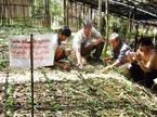 UBND tỉnh Quảng Nam bị kiện ra tòa