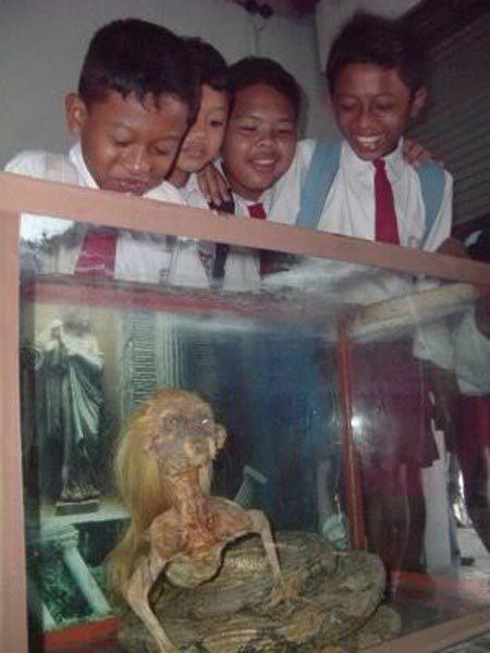 Thái Lan, nửa người, nửa rắn, sự thật, chứng bệnh lạ, tin đồn