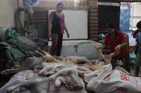hóa-chất, thịt-thối, chất-tẩy, thịt-heo-chết, lợn-bệnh, gòi-chả, thị-nguội, thực-phẩm