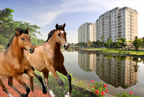 Năm Ngọ: Tạo hưng phấn để ngựa tung vó