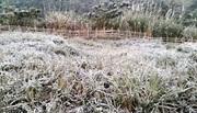 Nghệ An bất ngờ có tuyết