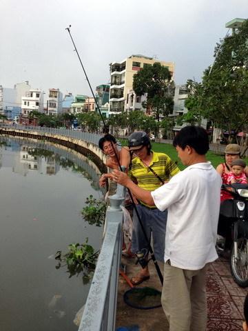 kênh, Nhiêu Lộc, chim trời, cá nước
