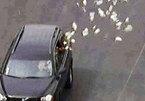 Sài Gòn: Lái xe rải tiền suốt 3 km
