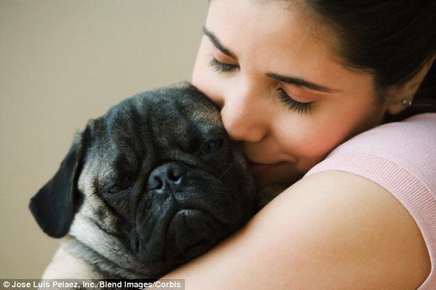 động vật, trẻ em, thú cưng, quan hệ, xã hội, con người