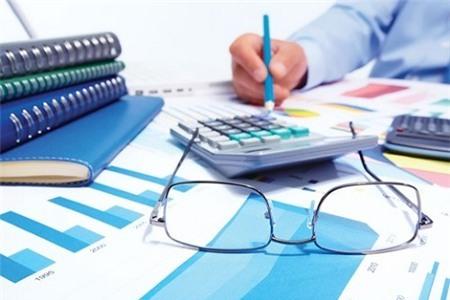 DNNN, cổ-tức, lợi-nhuận, cổ-phần-hóa, tăng-trưởng, lỗ, nợ, phá-sản, Tập-đoàn, EVN, Petrolimex
