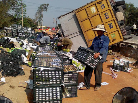 Xe chở hàng chục tấn trái cây bị lật, dân đổ ra giúp