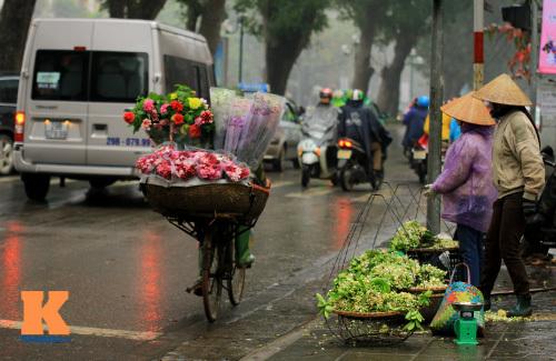 hoa bưởi, Hà Nội, tháng ba