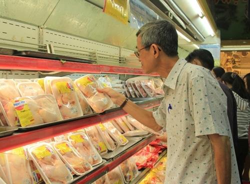 Gom gà ế chờ hết dịch bán