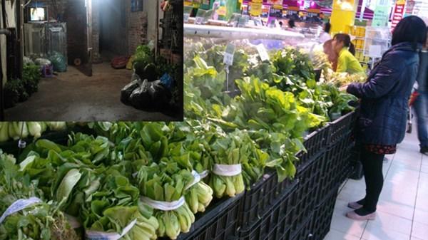rau-an-toàn, siêu-thị, Vân-Nội, Big C, không-rõ-nguồn-gốc, nấm, rau-mầm, cải-xoong