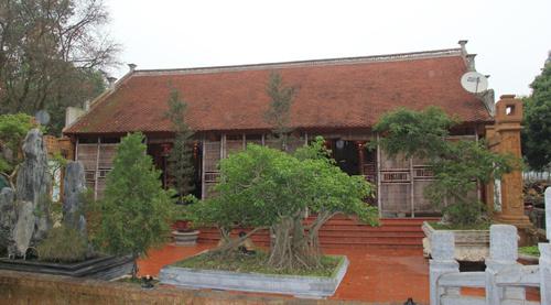 Vàng rực nhà gỗ mít đá ong đỉnh nhất Việt Nam