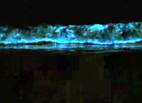 Đà Nẵng xôn xao tin đồn sóng biển phát quang