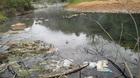 Tàn phá suối nước nóng 'có một không hai' ở VN
