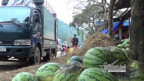 Trộm vào Việt Nam tha hồ cắm cờ trên đất trống