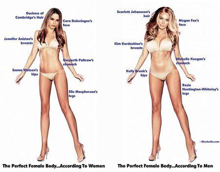 phụ nữ, đàn ông, khác biệt, hình thể, mẫu hoàn hảo